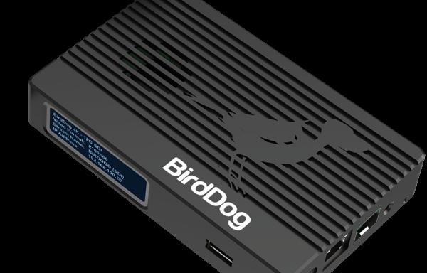 BirdDog 4K SDI-12G SDI, 4Kp60 NDI Encoder/Decoder